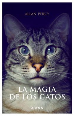 La magia de los gatos